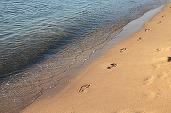 De ce sunt oamenii mai fericiți în apropierea mării. În creierul nostru se produc schimbări incredibile