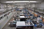 Vesela de plastic produsă în fabrica de la Topoloveni a italienilor de la Gold Plast ajunge în 39 de țări