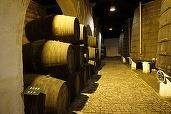 Producția națională de vin în acest an va fi în jur de 4 milioane de hectolitri, cu 11% mai mare decât în 2015
