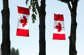 Negocierile UE - Canada privind acordul de liber schimb s-au reluat. Ministru canadian: Mingea e în terenul Europei