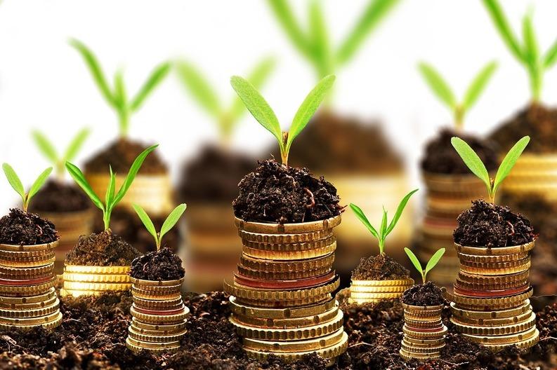 Un grup de investitori, gata să pună la bătaie 5 milioane euro pentru investiții în start-up-uri și IMM-uri