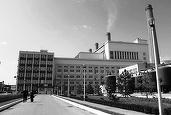 Greenpeace: Două treimi din termocentrale funcționează ilegal. Ce viitor au localitățile dependente de cărbune și centrale termice?