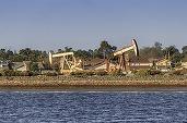 Petrolul scade puternic în contextul creșterii neașteptate a stocurilor de țiței din SUA