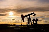 Petrolul recuperează declinul din prima parte a zilei