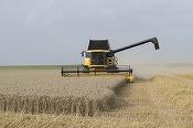Fermierii pot afla cele mai bune prețuri pentru transportul cerealelor printr-o aplicație software de 50.000 de euro