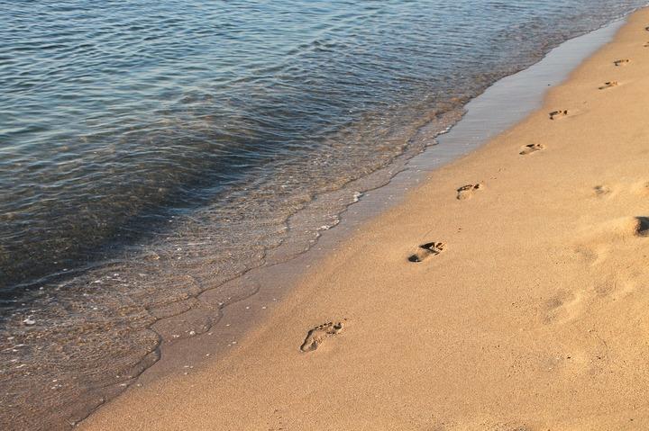 Turoperator: Doar 1% dintre românii care vin pe litoral și 50% din străini cumpără excursii opționale