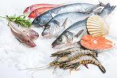 Românul nu este mare amator al produselor din pește, dar piața de profil a crescut cu 3%, până la 350 milioane de euro