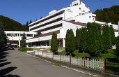 Complexul Hotel Moneasa, scos la vânzare cu 3,7 milioane euro de către fostul deputat Nicoară Creț