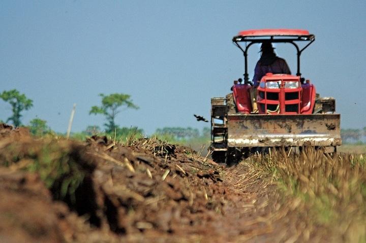Inspectorii Agriculturii merg în control la AFIR după ce banii pentru fermieri au fost epuizați în 6 minute. Alocarea fondurilor a fost oprită