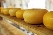 Guvernul american cumpără 5.500 de tone de brânză pentru a opri declinul prețurilor