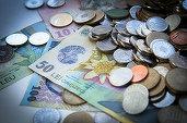 Românii care se întorc în țară ar putea primi până la 50.000 de euro pentru a-și deschide o afacere