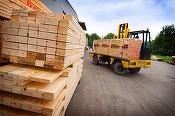 Oportunități 30 decembrie - Centrul de Recuperare și Reabilitare Neurosihiatrică Brâncovenești organizează licitație pentru furnizarea de produse din lemn
