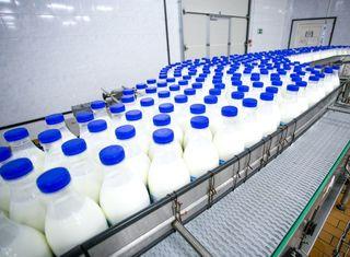 ANSVSA a descoperit E-coli în lapte şi carne de oaie, trei probe din 94 au fost pozitive