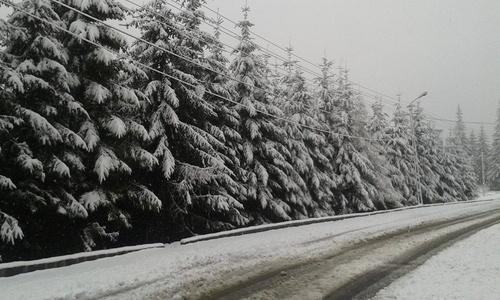 Drumul naţional 67 C, de la Novaci la Rânca, închis din cauza zăpezii şi a viscolului; turiştii veniţi în vacanţă sunt blocaţi în staţiune