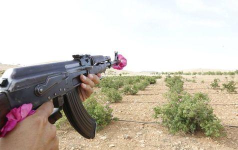 REPORTAJ: Din Siria, cu dragoste, de la un fost student în România - GALERIE FOTO