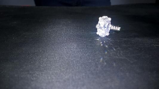 Bărbatul acuzat că a furat două diamante şi două inele dintr-un magazin din Paris rămâne în arest preventiv