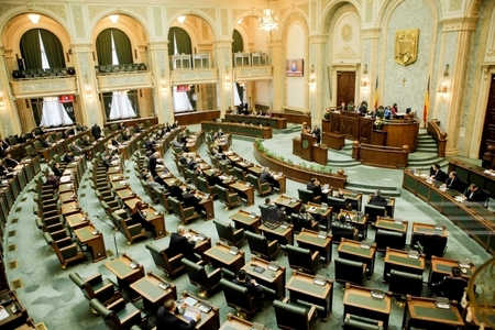 Senatul şi-a votat bugetul pentru 2017 în cuantum de 121,5 milioane de lei
