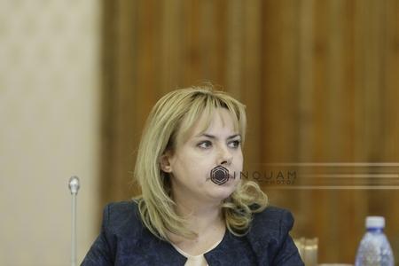 Ministrul Finanţelor: Creşterea economică a României nu este bazată doar pe consum, ci şi pe investiţii
