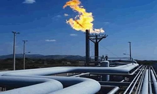 Electrica va vinde de anul viitor şi gaze naturale, pe lângă energie electrică