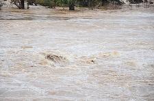 Harghita: 170 de gospodării şi peste 140 de hectare de terenuri agricole cultivate au fost inundate în două comune din judeţ