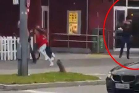 CRONOLOGIE: Filmul evenimentelor după atacul armat de la mallul din Munchen
