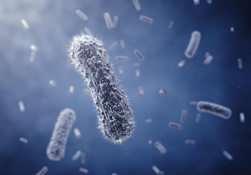 Reprezentanţii OMS au prezentat o listă a bacteriilor rezistente la antibiotice care ameninţă umanitatea