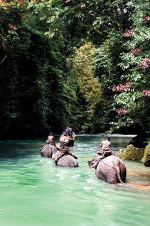 plimbare pe elefanti in Bali