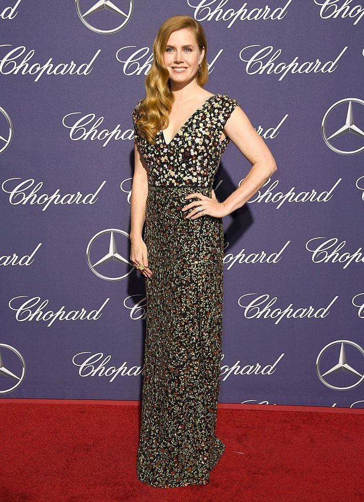 PALM SPRINGS, CA - JANUARY 02: Actress Amy Adams attends the 28th Annual Palm Springs International Film Festival Film Awards Gala at the Palm Springs Convention Center on January 2, 2017 in Palm Springs, California. (Photo by Frazer Harrison/Getty Images )