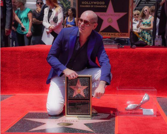 Pitbull Walk of Fame