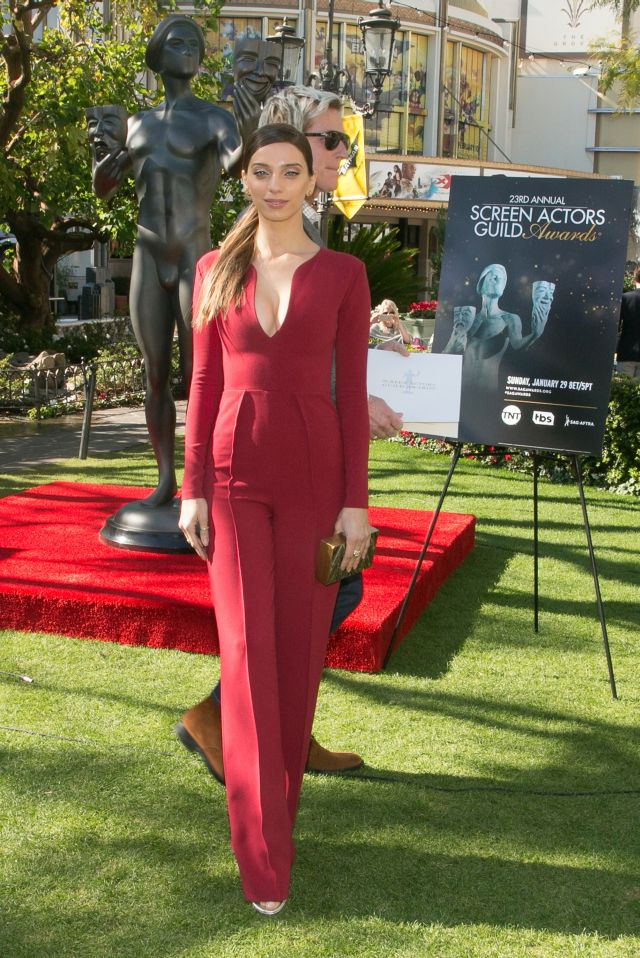 23rd Annual Screen Actors Guild Awards - Greet The Actor At The Grove