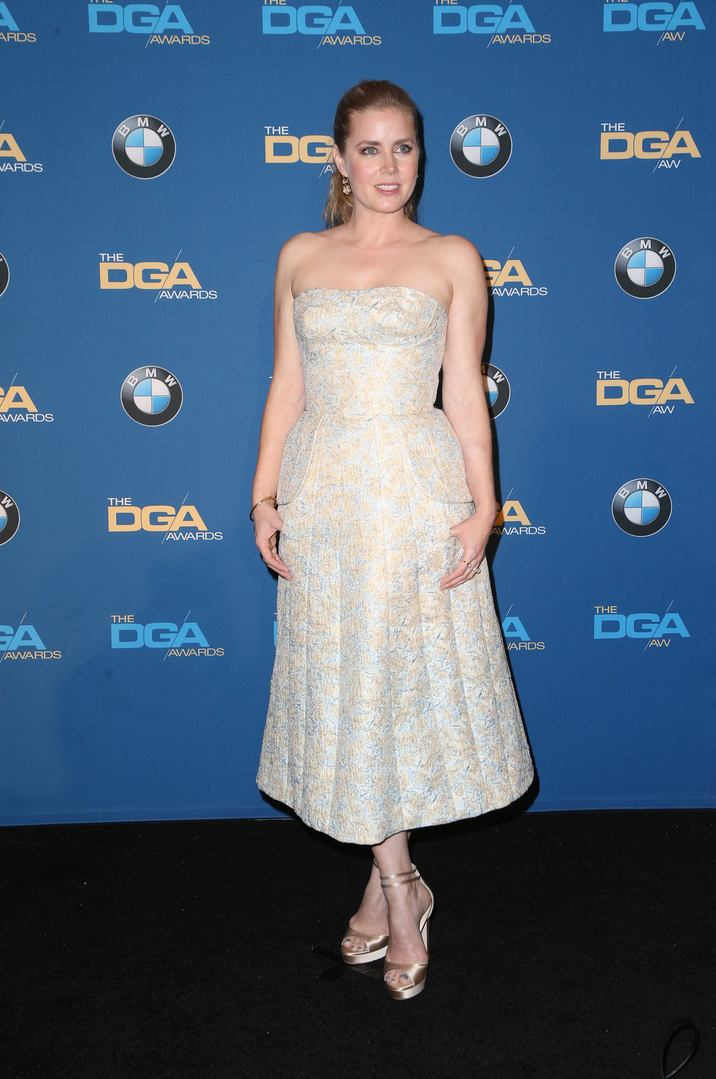 04 February 2016 -  Beverly Hills, California - Amy Adams. 69th Annual Directors Guild Of America Awards - Press Room held at The Beverly Hilton Hotel. Photo Credit: Faye Sadou/AdMedia