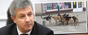 """Mama ministrului Justitiei Florin Iordache: """"I-am zis sa nu se bage intre caini! Trebuie sa munceasca cinstit, ca sunt locuri de munca""""!"""