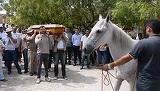Emotionant! Un cal a fost adus la inmormantarea stapanului sau. E incredibil ce a facut animalul cand au vrut sa bage sicriul in groapa