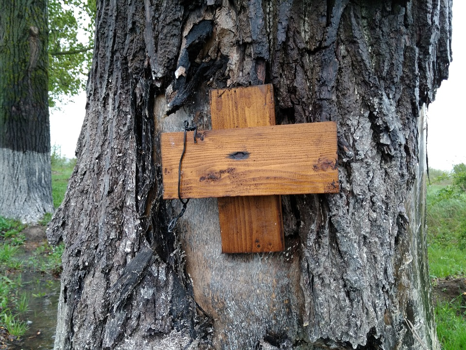 Simboluri bizare la locul in care a murit Dan Condrea! O icoana cu un cui infipt in cap si un mesaj cu semnificatie oculta, asezate pe copacul in care a intrat masina sefului Hexi Pharma, in urma cu un an | EXCLUSIV