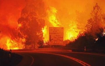 Incendiu de proportii intr-o padure din centrul Portugaliei! Sunt 57 de morti si 59 de raniti