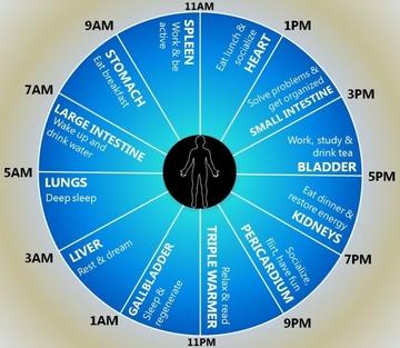 Ceasul organismului. Te trezesti la aceeasi ora in fiecare noapte? Ce probleme de sanatate si mentale poti sa ai!