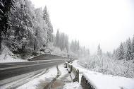 Prima ninsoare din Banat! Stratul de zăpadă atinge trei centimetri