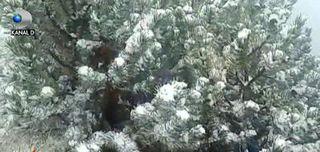Meteorologii avertizeaza! Un ciclon se formeaza la granitele tarii si aduce trei zile de ploi!