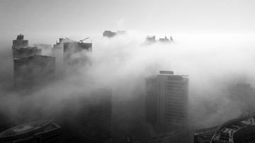 Cod galben de ceata in 7 judete