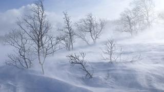 Urmeaza o iarna grea! ANM anunta temperaturi de minus 30 de grade Celsius
