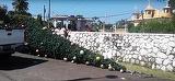 Dramatic! Cinci persoane au murit în timp ce decorau un brad de Crăciun