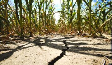 Previziuni sumbre din partea specialistilor: Iarna scurta anunta o vara secetoasa