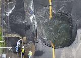 Cutremur in  Japonia! Cel putin trei persoane au murit luni dimineata