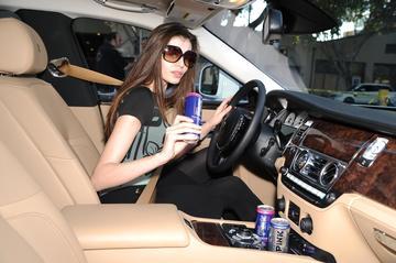Monica Gabor nu-l ajuta deloc pe iubitul chinez in afaceri! Firma de bauturi energizante a lui Mr. Pink pierde bani in Romania, dar face milioane de dolari in America!