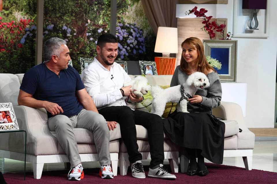 """Cesar Millan la """"Teo Show"""". Prima interventie in Romania, in direct, a celebrului antrenor canin: """"Cainii au cheia fericirii, a respectului si a increderii"""""""