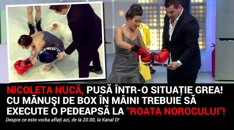 Nicoleta Nuca, pusa intr-o...