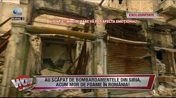 """Au scăpat de bombardamentele din Siria, dar acum mor de foame în România! Mărturisirile sfâşietoare ale unei femei cu patru copii:""""Vedeam numai oameni cu capul tăiat! A fost cumplit!"""""""