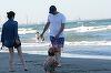 Alin Petrache, gest desprins din filmele de dragoste, pe vechi! A iesit cu Maria Marinescu la o plimbare romantica pe plaja si i-a facut o declaratie scrisa pe nisip