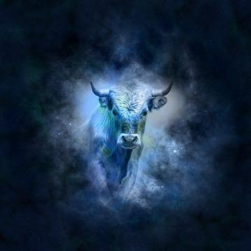 Horoscop Cassandra 12 - 18 decembrie: O saptamana plina de surprize placute pentru cateva zodii si plina de suparari pentru altele