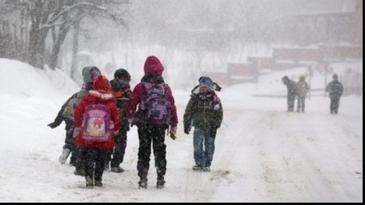 Gradinitele, scolile si liceele vor fi inchise luni si marti in Capitala si in judetul Ilfov, a anuntat Gabriela Firea
